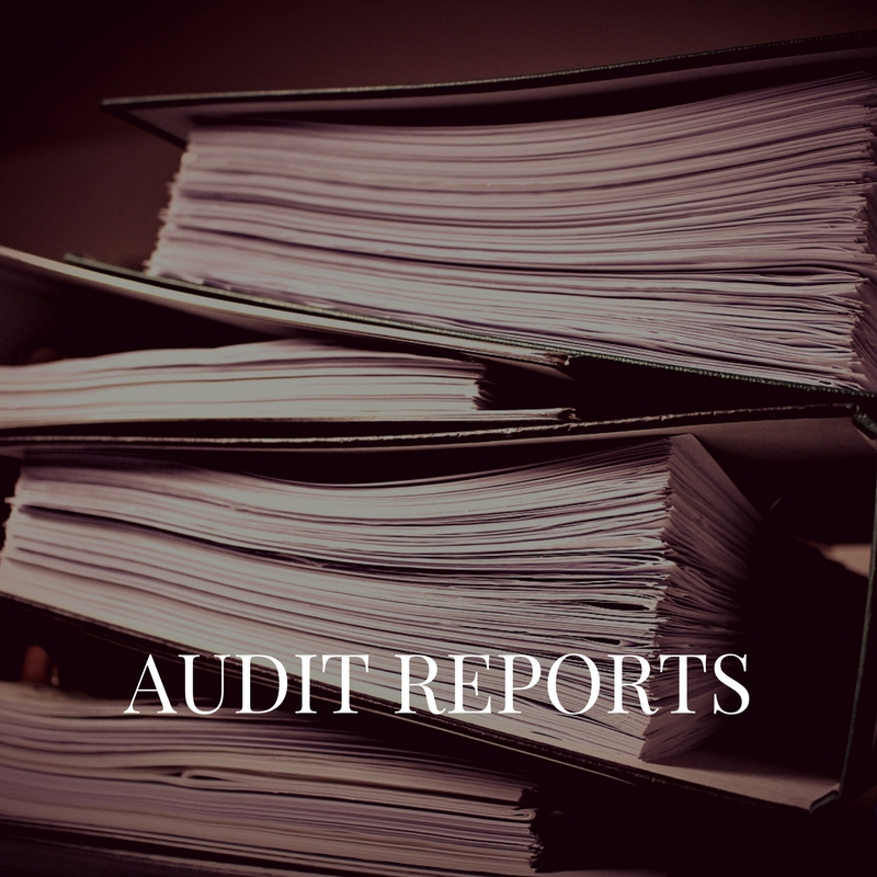 Audit Reports link